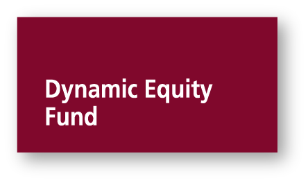 Dynamic Equity Fund
