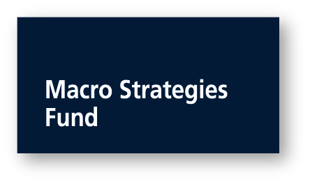 Macro Strategies Fund